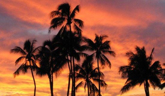 Honolulu Sunset from 550 Ala Moana Park