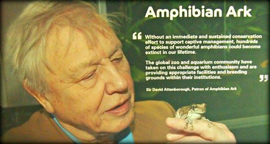 London zoo David Attenborough