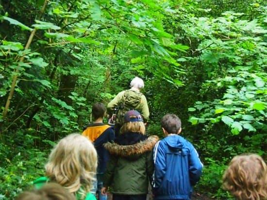 Homeschooling and traveling. Socialisation gor homeschoolers. Forest School woods