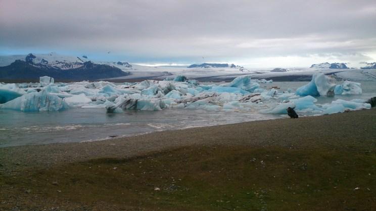 Im Hintergrund der Vatnajökull Gletscher