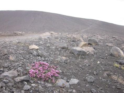 Beim Aufstieg des Kraters