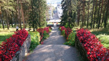Waldallee mit Blumen führt in die Innenstadt