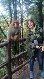Mama and a wild life monkey
