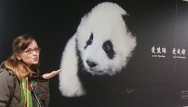 In love with Chengdu