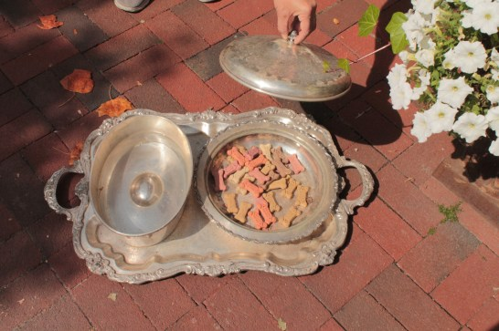 Street snacks for your dog