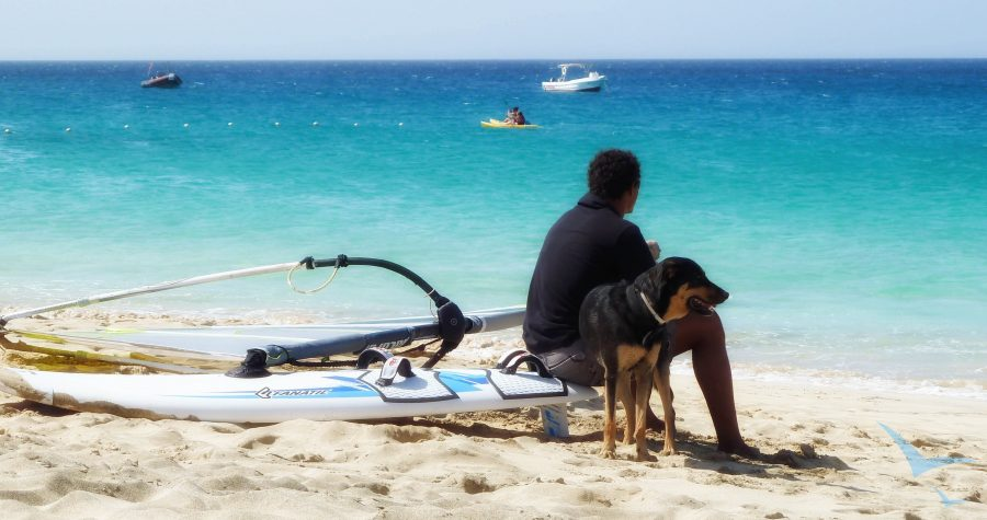 Kapverdische Inseln | Sal - Santa Maria Strand Windsurf Guide mit Hund