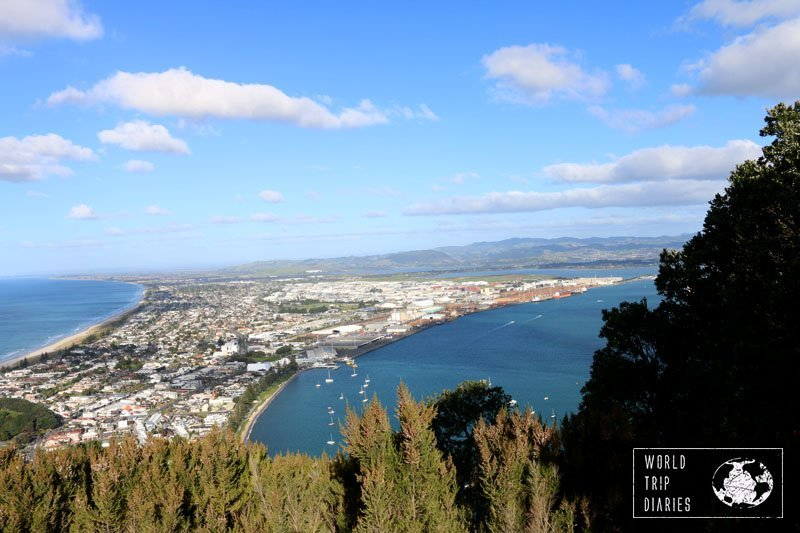From the top of Mauao, the harbour.