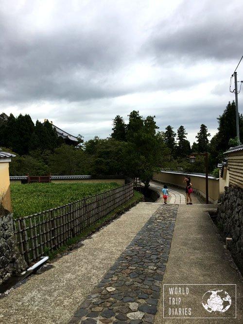 Nara walks