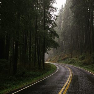 Why should you take a Road drive to Goa from Pune during Monsoon? 2