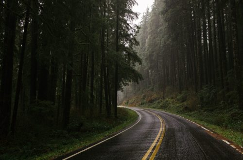 Why should you take a Road drive to Goa from Pune during Monsoon? 8