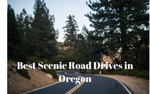 Best Scenic Road Drives in Oregon 5