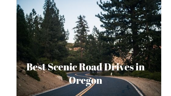 Best Scenic Road Drives in Oregon 1