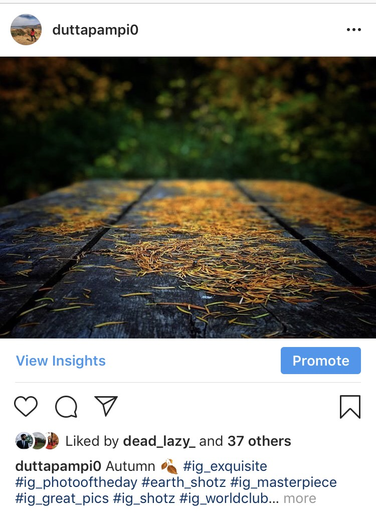 How Instagram is Influencing Today's Travel Behaviour 5