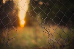 background, fence, freedom-3332559.jpg