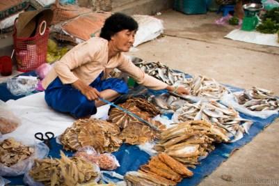 Vietnam_South_Mekong_2016_WorldViber_20