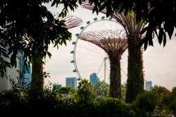 Futuristic gardens