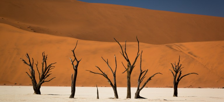 Strong contrasts in the middle of Namibia