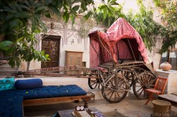 Carriage was the main mean of transport for the ladies of the house.