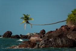 India impressions: Goa