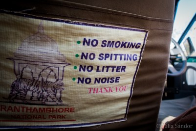 India Impressions: rules in the car