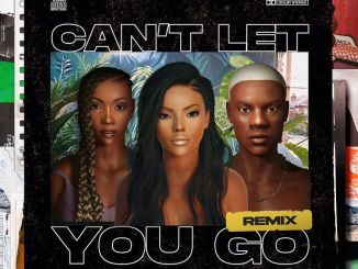 Stefflon Don – Can't Let You Go (Remix) Ft. Rema & Tiwa Savage