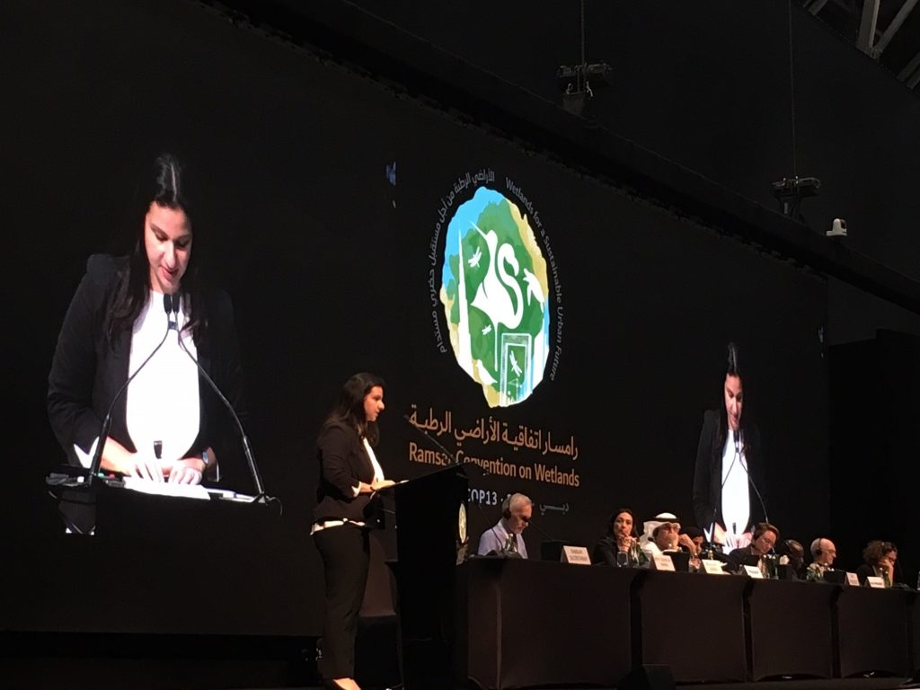 A woman delivers a speech to the Ramsar COP13 plenary