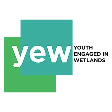 Logo saying YEW, Youth Engaged in Wetlands