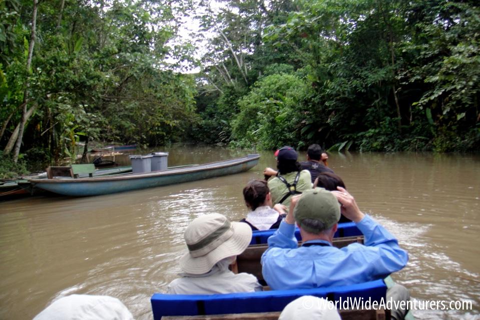 Amazon Napo Ecuador 26