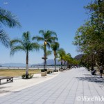 Housesitting in Ajijic Lake Chapala