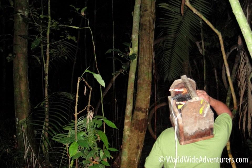 Amazon Napa Ecuador 24
