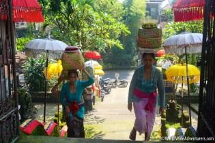 Living in Bali24