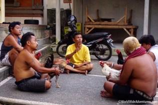 Living in Bali35