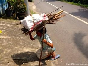 Living in Bali79