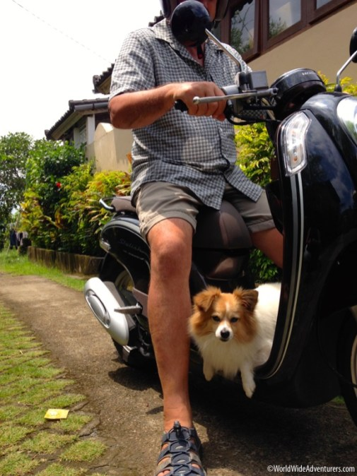 Riding A Scooter In Bali24-9515