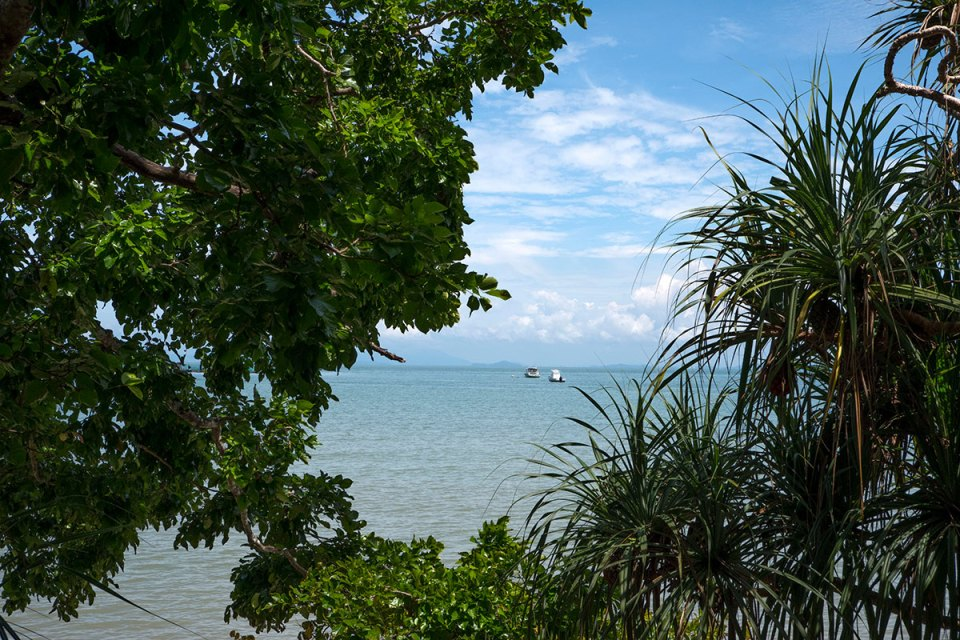 Penang view from the jungle