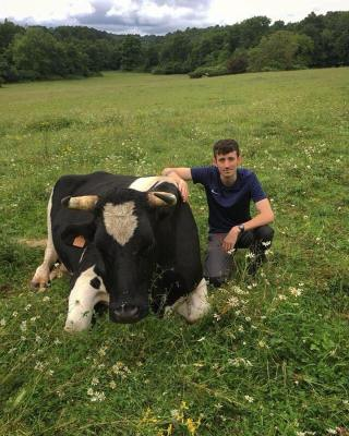 Vegan Joe Benham with French sanctuary cow