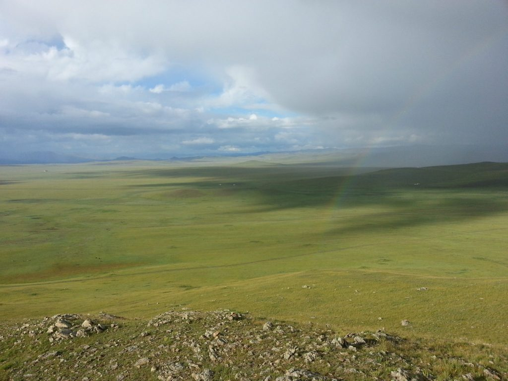 view over the green fields of Mongolia