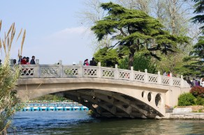 bridge connecting various parts of the park