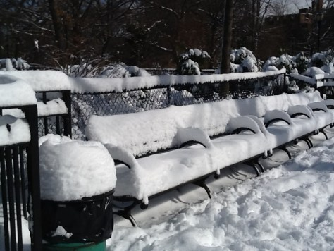 Snow Cushioned Benches In Tompkins Square Park