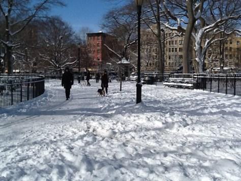 Unshoveled Park Path