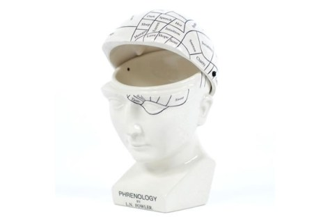 Phrenology Head Hinged Case Open
