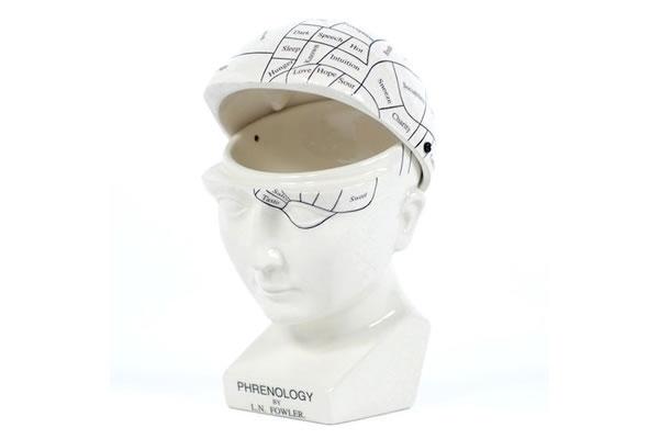 Phrenology Head Hinged Case Open