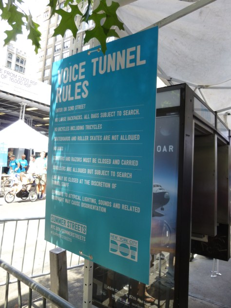 Voice Tunnel Rules