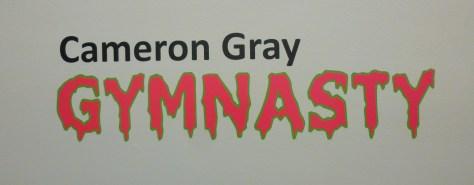 Cameron Gray Gymnasty Signage