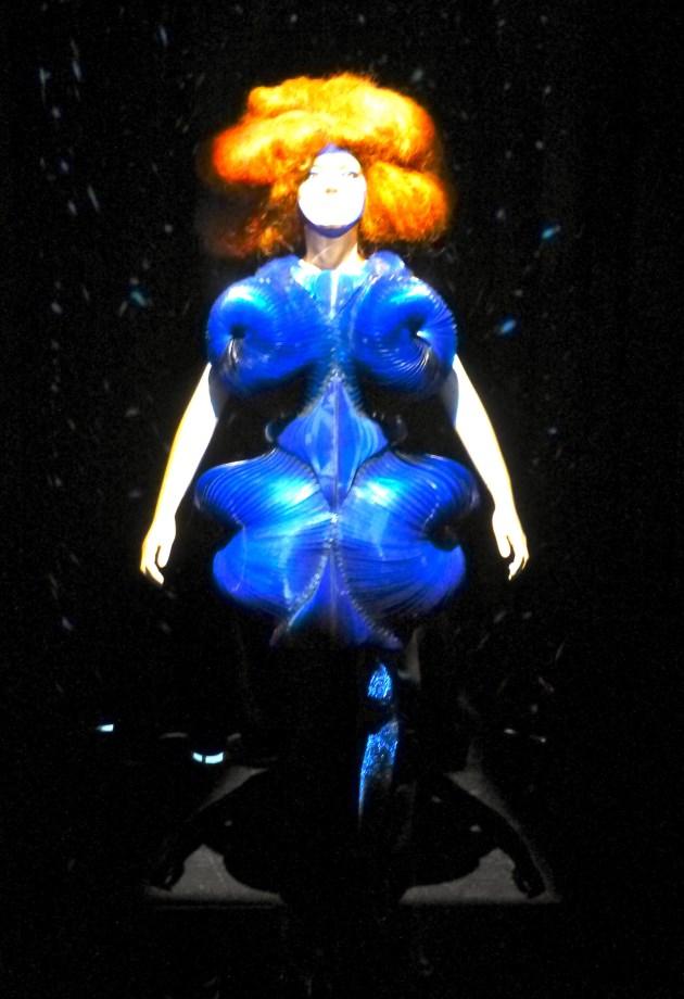 Bjork Biophilia Dress