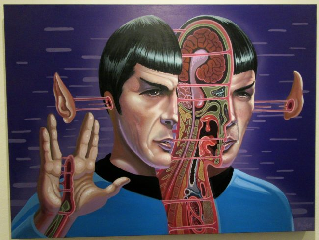 Dissection of Spock