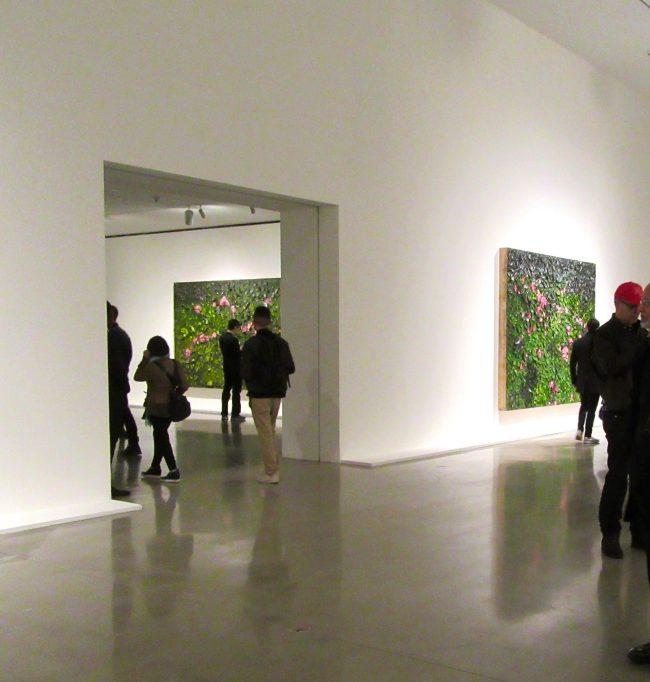 Schnabel Installation View