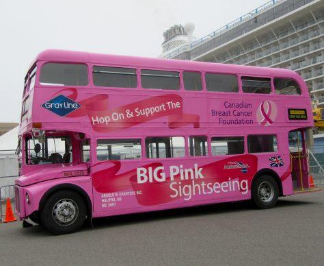 Pink Sightseeing Bus