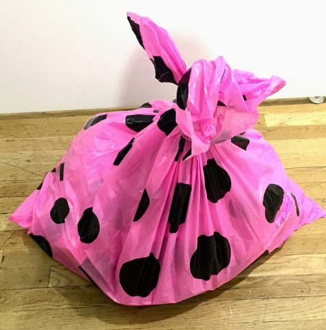 Pink Polka Dot Garbage Bag On The Floor