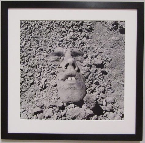 Face in The Dirt